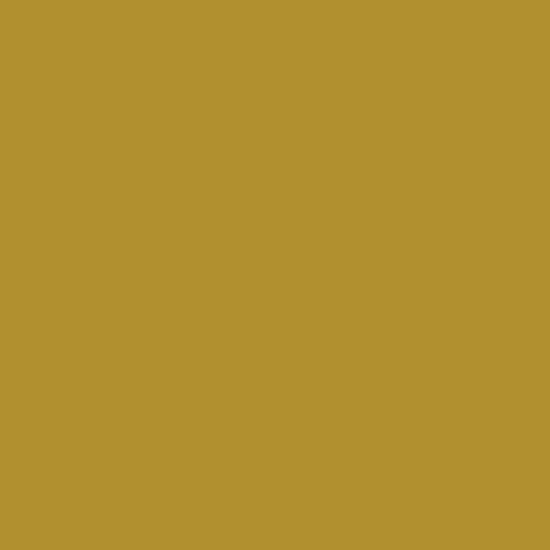 couleur-absinthe.jpg