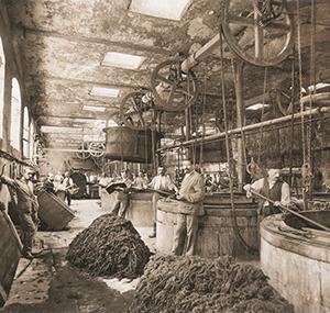 Erbe Balsan Mitarbeiter altes Werk alte Fabrik Chateauroux